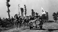 In Desperate Battle: Normandy 1944