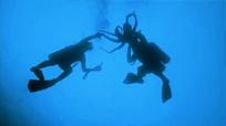 Chasse à la pieuvre, Octopus Hunt