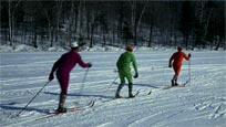 Ski de fond / Cross-country Skiing
