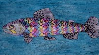The Trout That Stole the Rainbow